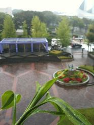 raining0.12