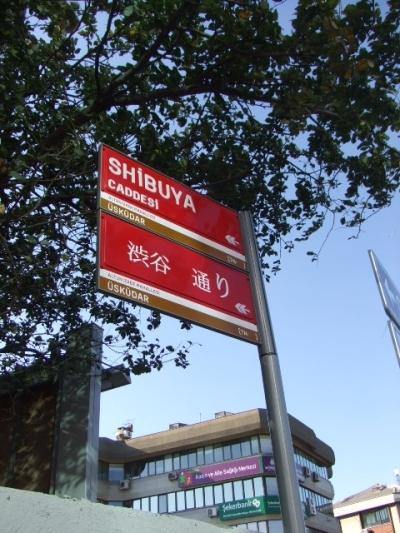 渋谷通り1